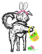 EASTER DAISY-PROFILE.png